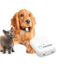 Tractve - Echtzeit Verfolgung für Ihr Haustier