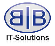 B&B IT Solutions OG